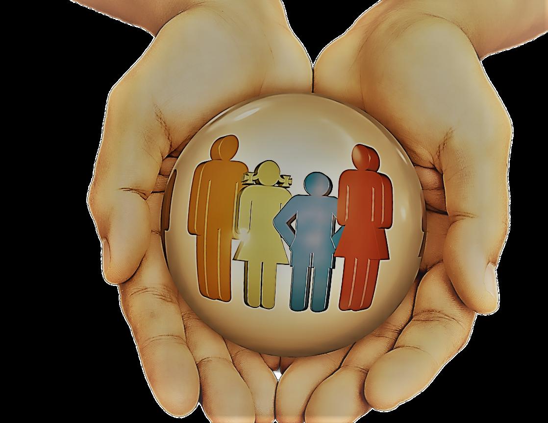 Millennium Insurance : assurances
