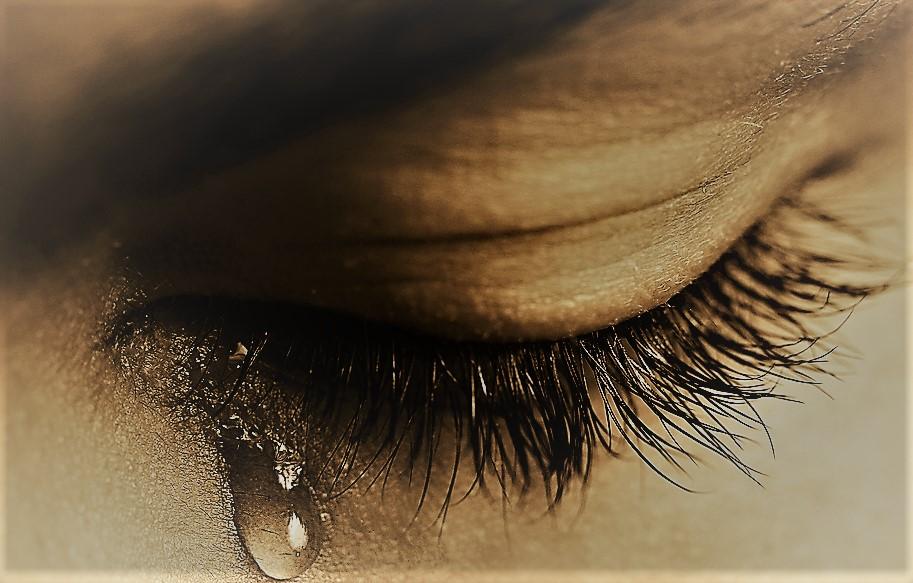 Comment parler du deuil, conseils par Yves Alphé