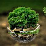 La PPE pour agir en faveur de l'environnement, expliquée par Vincent Martet